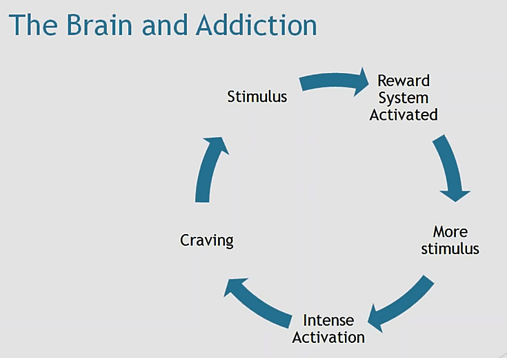 How the brain leads us to gambling addiction